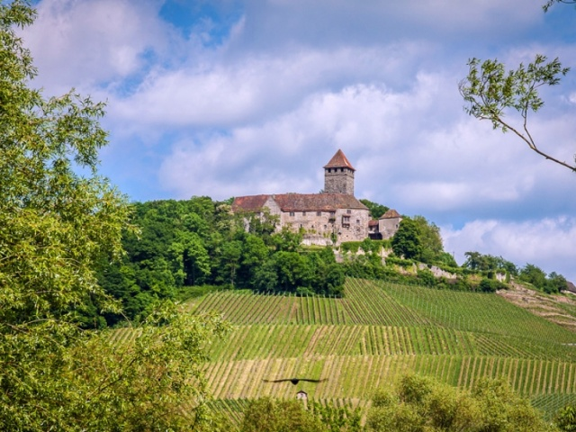 Oberstenfeld