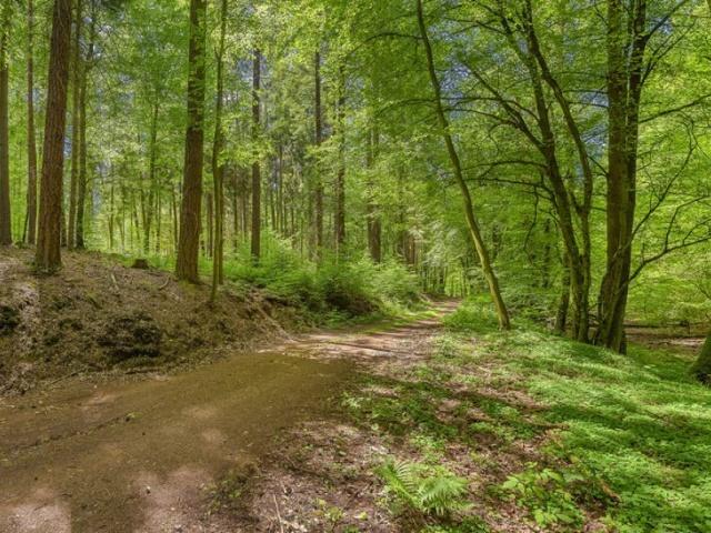 Pfälzer Jakobsweg Nordroute Etappe 4