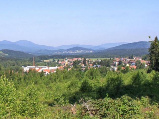 Frauenau