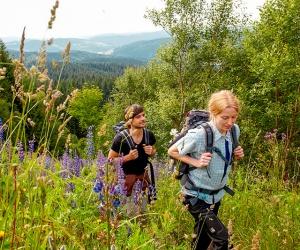 Aufstieg-am-Schneckenstein-Foto-TV-Erzgebirge-R-Gaens