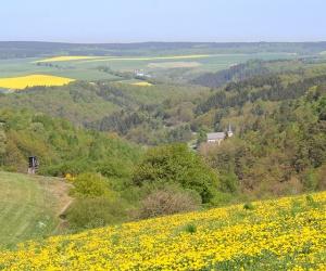 Ausoniusweg_Hunsrück_Etappe4