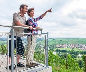 Aussicht-von-der-Vogelsburg