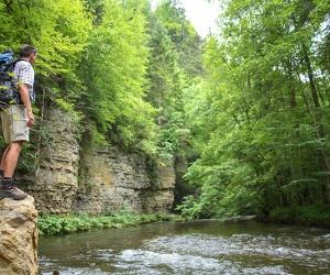 Blick-auf-die-Wutach-Foto-Schluchtensteig-Schwarzwald