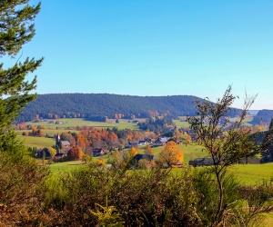 Blick-ins-Sulzbachtal