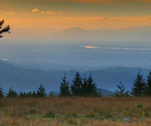 Blick-vom-Schliffkopf-auf-Rheinebene-und-Vogesen-Foto-Michael-Sauer