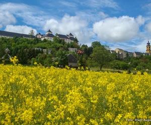 Blick-zum-Schloss-Augustusburg