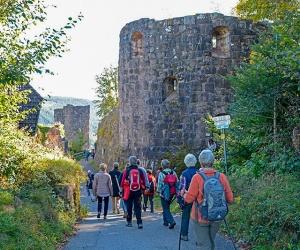 Burgruine-Hohenschramberg