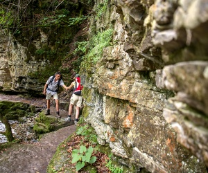 In-der-Wutachschlucht-felsiger-Weg-Foto-Schluchtensteig-Schwarzwald