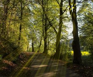 Lahn-Camino-Etappe-2