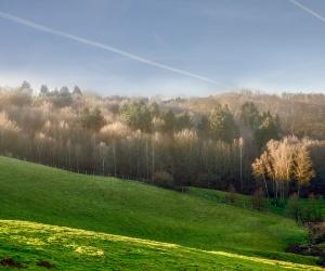 Landschaft_neanderland_(Kreis-Mettmann-_-Chardin)