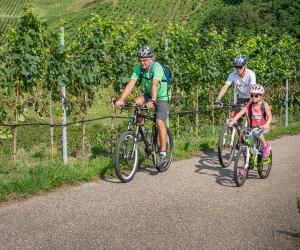 Radfahren-Bühlertal