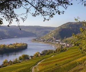 Rheingau-bei-Lorch-am-Rhein-(c)-Rheingau-Taunus-Kultur-und-Tourismus-GmbH