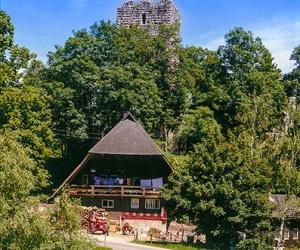 Ruine-Waldau
