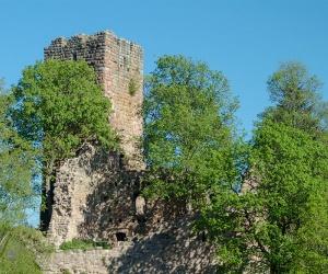 Ruine-Waldau1