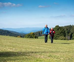 Wandern-Ferienland-Schwarzwald