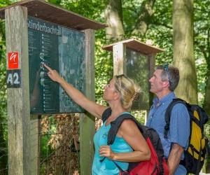 Wandern-auf-dem-neanderland-STEIG_(Kreis-Mettmann-_-Chardin)