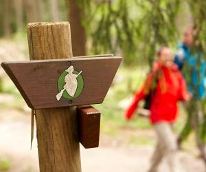 Wegeschild-allgemein-(c)-Harzer-Tourismusverband-M-Gloger
