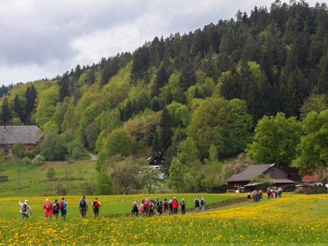 Lauterbacher Wandersteig Etappe 1
