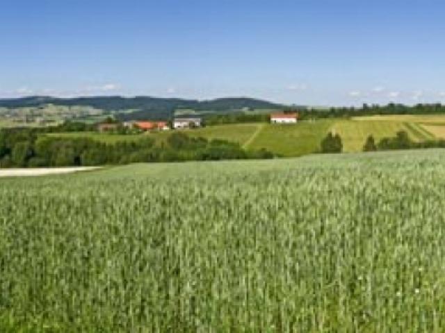 Donausteig Südroute Etappe 3