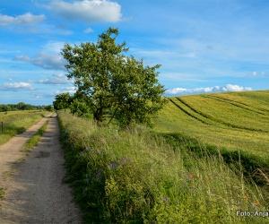 maerkischer_landweg_etappe009