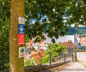 panoramawanderweg_taubertal_etappe004