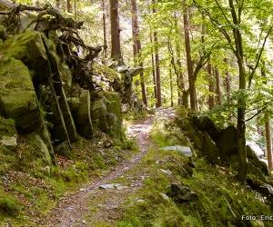 panoramaweg_schwarzatal_etappe001
