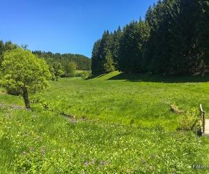 panoramaweg_schwarzatal_etappe006