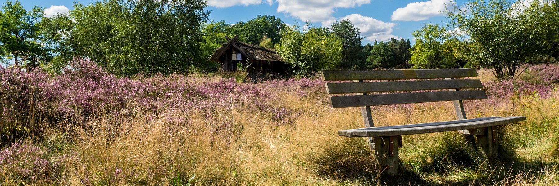 Wandern In Niedersachsen Wanderkompass De
