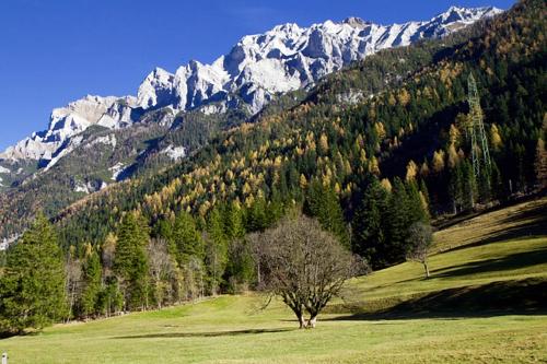 Alpen vs. Harz – wo lässt es sich besser wandern?