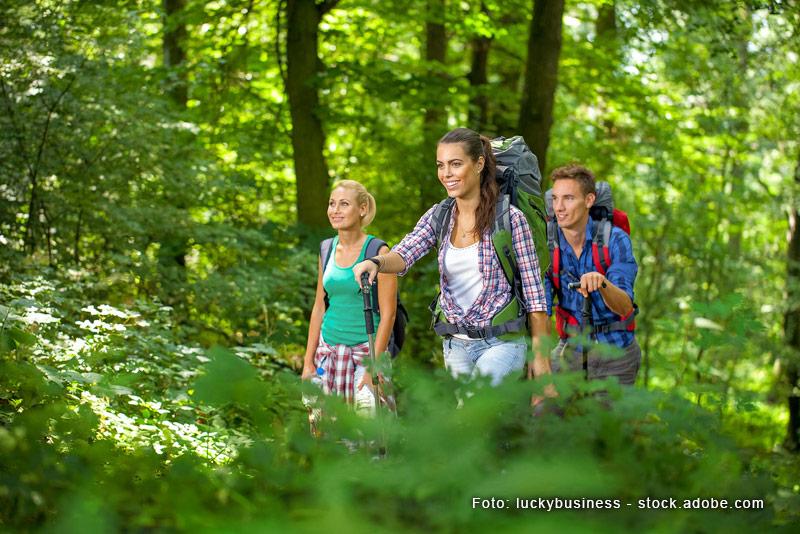 Tour Lahnwanderweg
