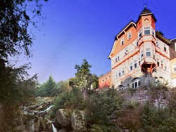 Hotel und Waldgasthaus Steinerne Renne
