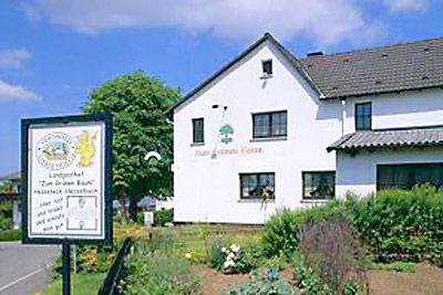 Landgasthof Zum Grünen Baum