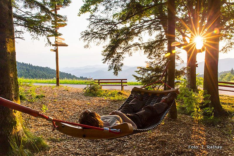 Premiumwandern in der Ferienlandschaft Mittlerer Schwarzwald
