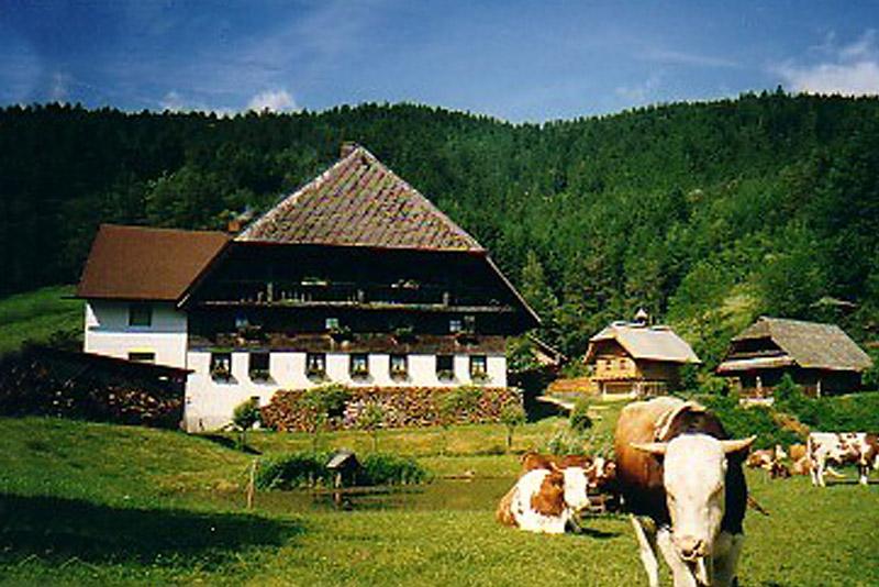 Ferienwohnung Bauernhof Hock