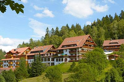 Hotel Forsthaus Auerhahn