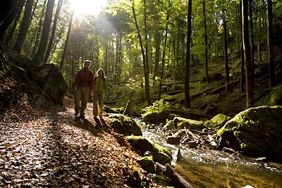 Pack den Rucksack voll - Wandern in der Pfalz