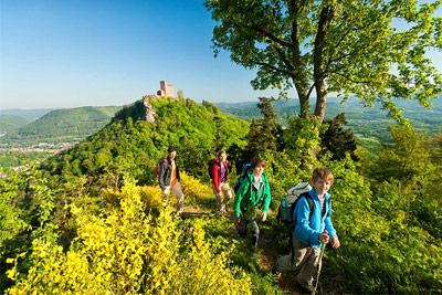 Wandern ohne Gepäck - auf Höhenweg, Waldpfad & Weinsteig
