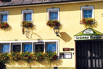 Hotel & Gasthof Grüner Baum