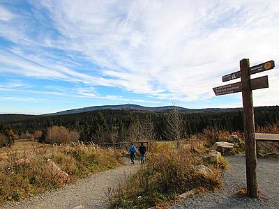 Die schönste Wanderung auf dem Harzer-Hexen-Stieg  -  Wandern ohne Gepäck