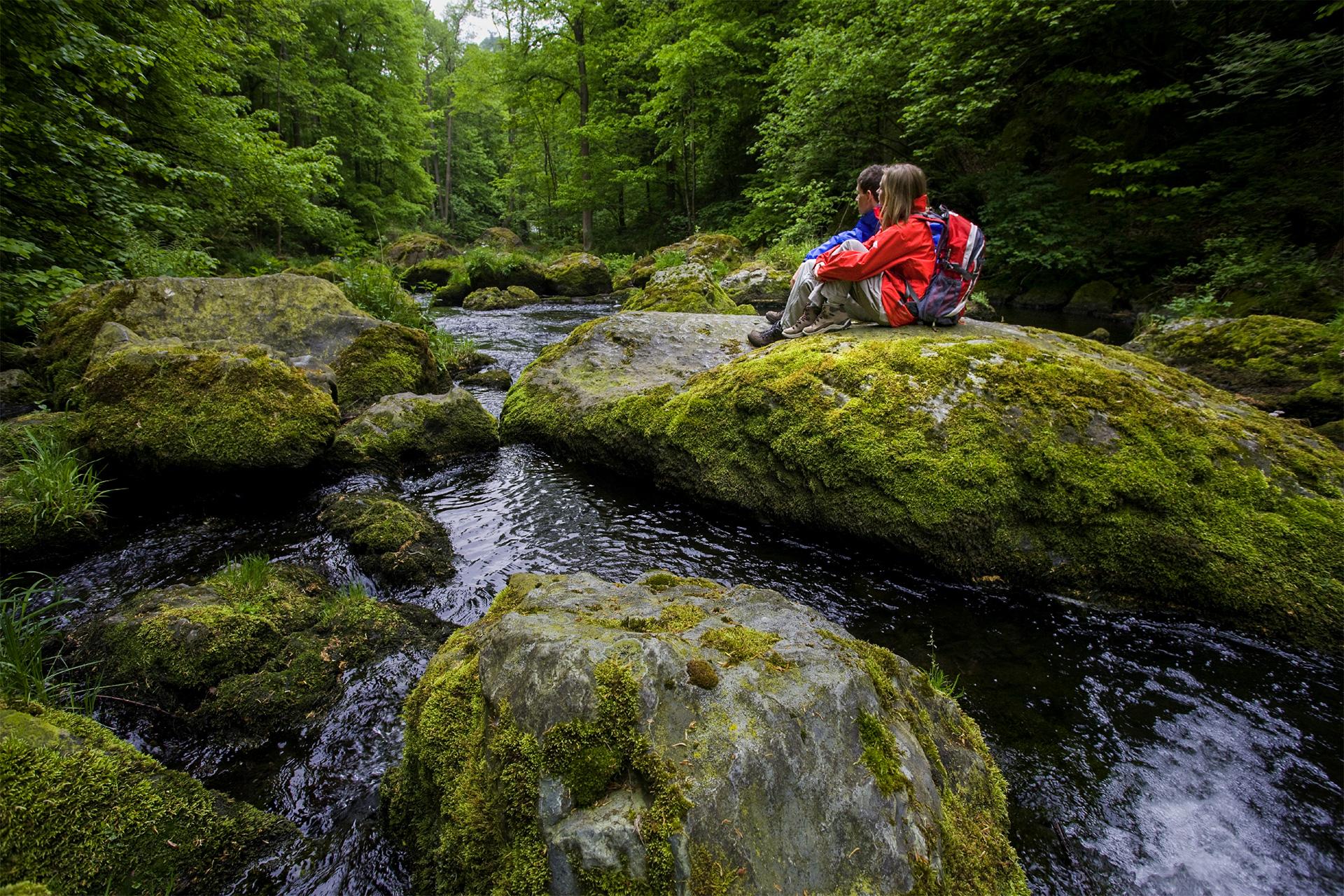 Das Vogtland eine Sinfonie der Natur