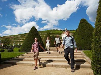 Die schönste Wanderung auf dem Sächsischen Weinwanderweg -  Wandern ohne Gepäck